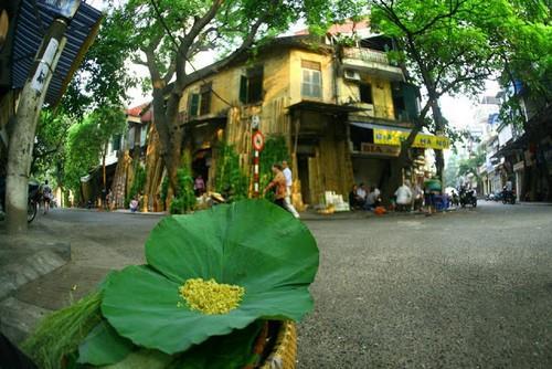 Phố cổ Hà Nội (36 phố phường) - Du lịch Hà Nội