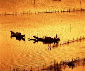 Phá Tam Giang