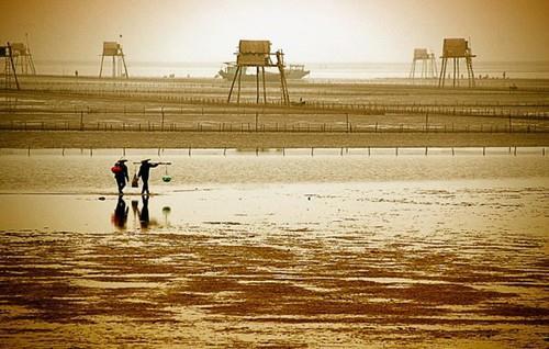 Bãi biển Đồng Châu - Thái Bình