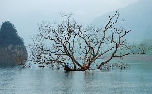 Hồ Na Hang