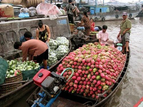A medium sized boat sell a lot of dragon fruit