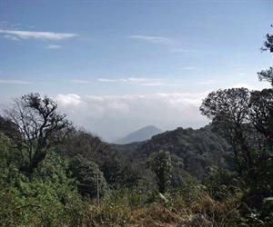 Khu bảo tồn thiên nhiên Phia Oắc
