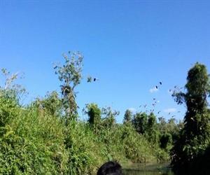 Khu bảo tồn thiên nhiên Lung Ngọc Hoàng