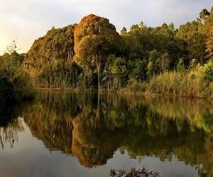 Vườn quốc gia Chư Mom Ray 04