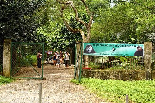 Vườn quốc gia Cúc Phương rộn rã vào hè 4