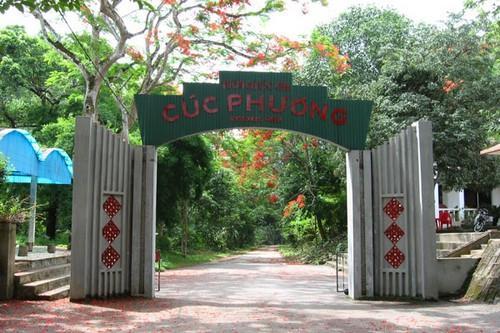 Vườn quốc gia Cúc Phương rộn rã vào hè