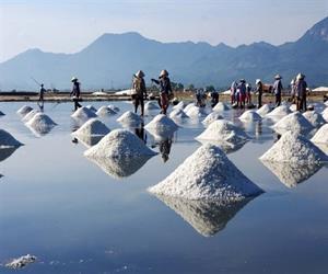 Ruộng muối Sa Huỳnh