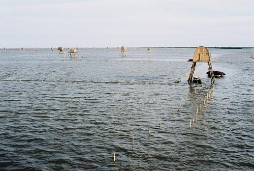 Bãi biển Đồng Châu - lều ngao trải hút tầm mắt