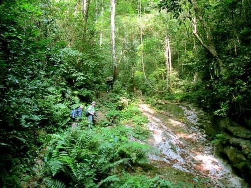 Vườn quốc gia Xuân Sơn với tiềm năng du lịch sinh thái