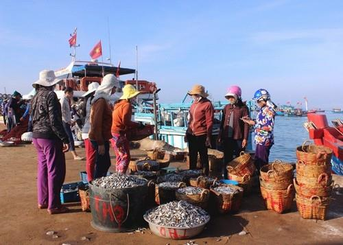 Ngành du lịch đảo Lý Sơn và sự tham gia của người dân