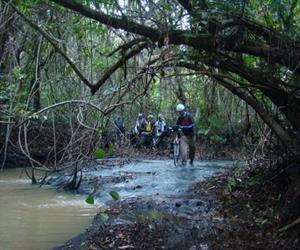 Tuyến đạp xe xuyên rừng ở Vườn quốc gia Lò Gò Xa Mát