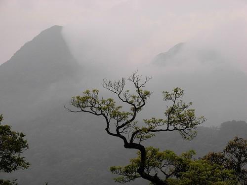 Vườn quốc gia Tam Đảo