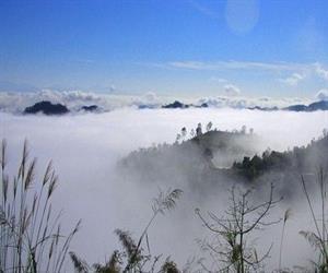 Đèo Pha Đin - thảm mây bồng bềnh
