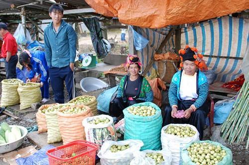 Đèo Pha Đin - sản vật địa phương